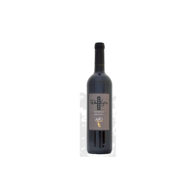 czarny avola pachys d.o.c. 75 cl Vini Arfò - 1