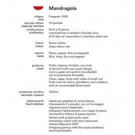 mandragola frappato 75 cl Azienda Agricola Paolo Calì - 2
